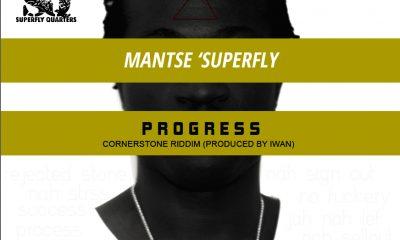 Mantse Superfly - Progress