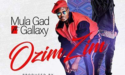 Mula Gad feat. Gallaxy - Ozim Zim