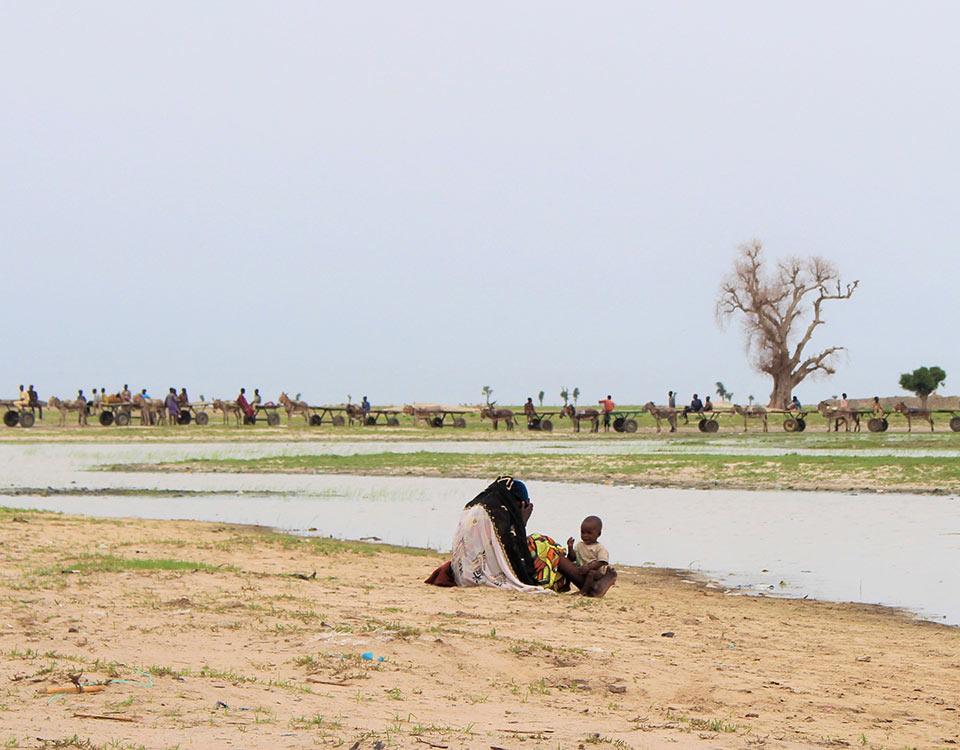 Lake Chad Basin